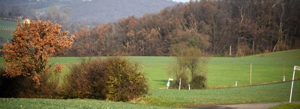 Kleine-Hoehe-in-Wuppertal-Stadtgrenze_WAZ